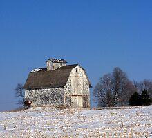 Sun-Kissed Barn by Brian Gaynor