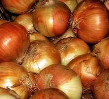 Onions by Nadya Johnson