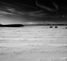 Under a Wishbone Sky BW by Andy Freer