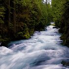 McKenzie River below Sahalie Falls by Allan  Erickson
