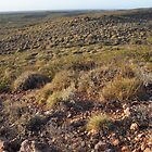 Arid Pilbara landscape by Peter Rattigan
