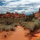 Trail at Arches National Park by JimGuy