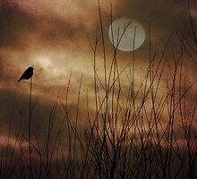 Lonely Marsh by digitalmidge