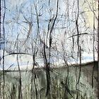 Bushfire 2 by Pete Gailey