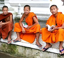 Monks #1 by Peter Voerman