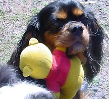 Nell so loved her Pooh Bear by BronReid