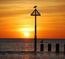 Borth Sunset by Joshdbaker