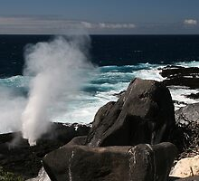 Blowhole by Jane McDougall