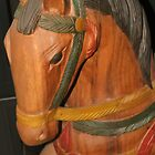 Wooden Horse by ScenerybyDesign