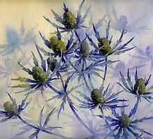 Sea Holly by artbyrachel