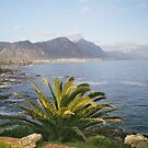 Koueberge Mountains Overstrand Rural, Hermanus, Western Cape by heartyart