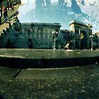 Pigeon's world by VperVioletta