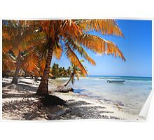 Caribbean beach with boat Poster