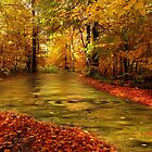Autumn Stream by Norfolkimages