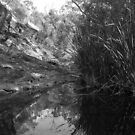 Sturt Gorge - South Australia by MuscularTeeth