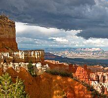 Castel by Valentina Gatewood