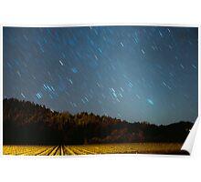 Vineyard Stars Poster