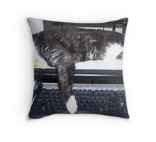 Learning how to use computer or nap time! Throw Pillow