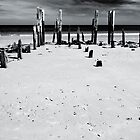Port Willunga 1B by Werner Padarin
