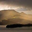 Harbour View - Dunedin NZ by Hans Kawitzki