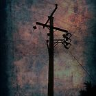 Power Lines by Doug Sim