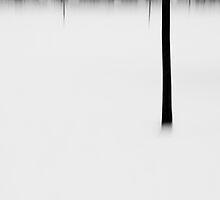 blurred tree lines by Martin Pickard