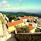 welcome to paradise 126..peninha sintra portugal.. by Almeida Coval