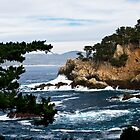 Point Lobos by farmdogger