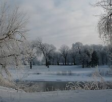 A Winter Scene by swaby
