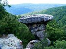 Pedestal Rock, Arkansas Ozark-St. Francis National Forest 6 23 2005 by NatureGreeting Cards ©ccwri