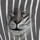 Tiger Stripes by Sarah Russell