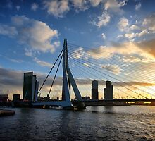 Erasmus bridge Rotterdam by ziko