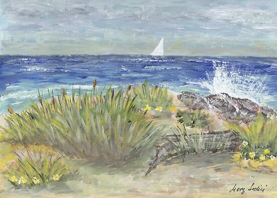 Beach In Florida  by Mary Sedici