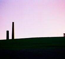 Sydney Park St Peters #2 by Juilee  Pryor