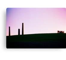 Sydney Park St Peters #2 Canvas Print