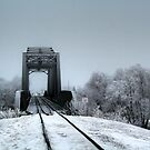 The Railroad Trestle by Larry Trupp