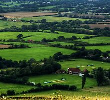 View from Devil's Dyke by George Parapadakis (monocotylidono)