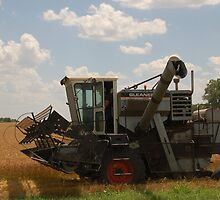 Gleaner F combine by dragonphly