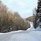 Ranger Lake Road by tanmari