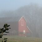 Red Barn Through the Mist by © Bob Hall