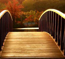 Autumn Perspective by LaFleureRouge1