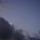 dark sky moon  by Anne koufos