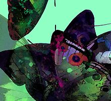 Abstracted Butterflies in Fauvist Colors #5  by Ivana Redwine