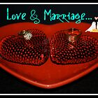 Love & Marriage...la,la,la,la! by Carol Clifford