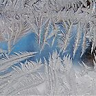 Magical Ice Crystals by H A Waring Johnson