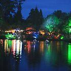 Pukekura Lights by joybliss