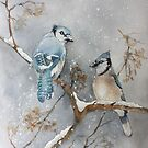 A Pair of Jays by Bobbi Price