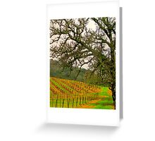 napping valley Greeting Card