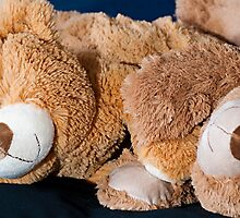 Snuggle Bears Holding Hands by Doug Greenwald