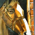 Tracy's horse portrait Pastel by Shirlroma